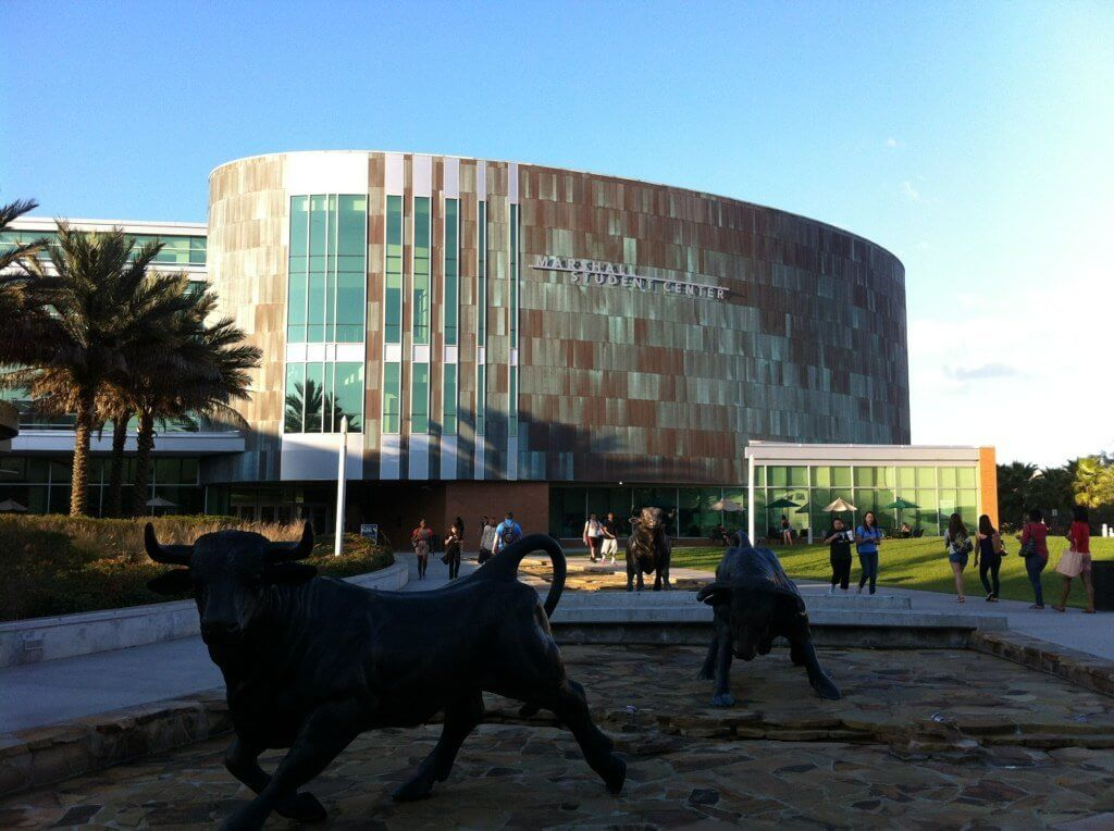 University of South Florida Tampa Campus Photo