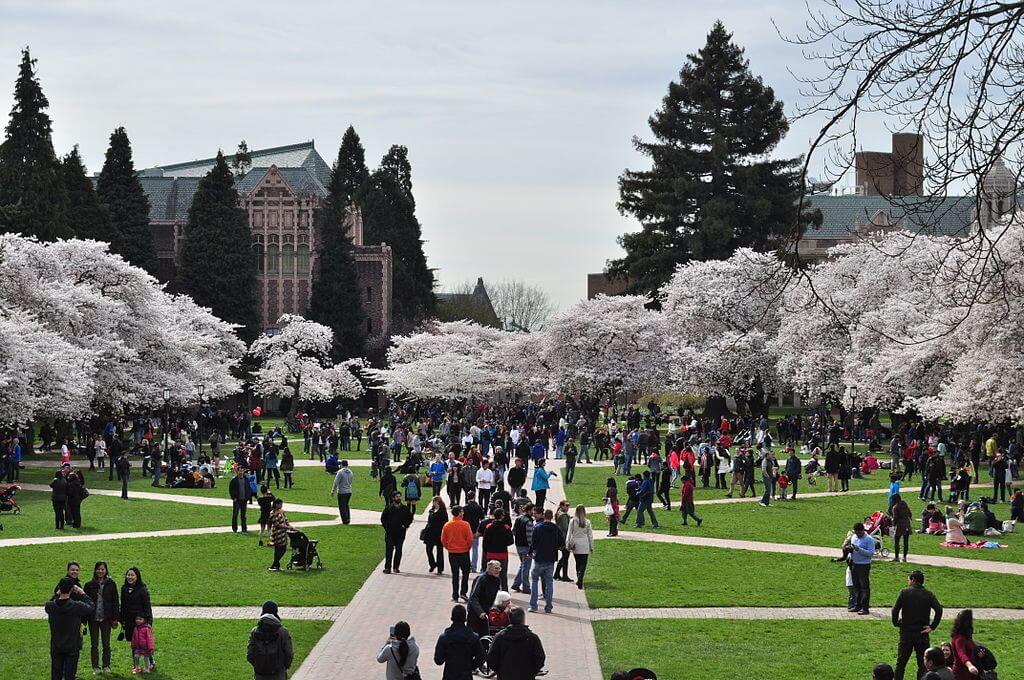 University of Washington Campus Photo
