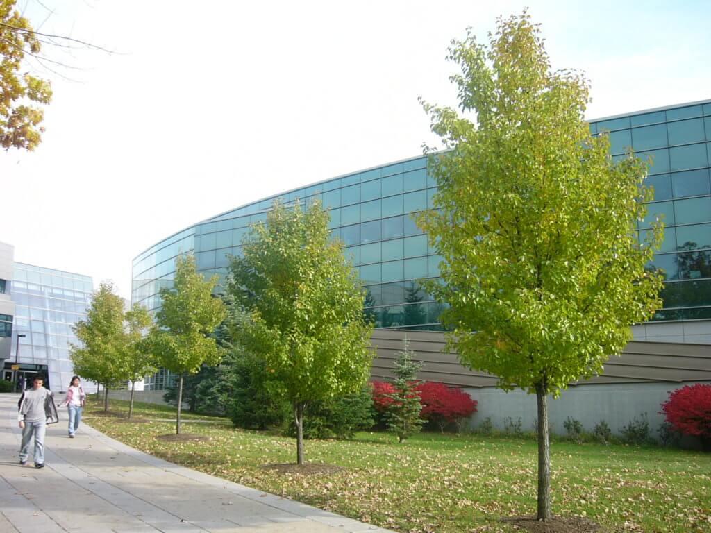 Binghamton University Campus Photo